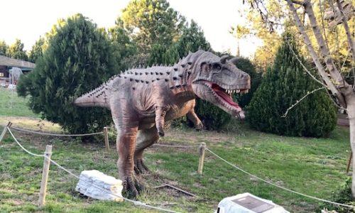 Doğa Yıldız Adana Dinozor Park – Adana'da Çocuk Olmak ®